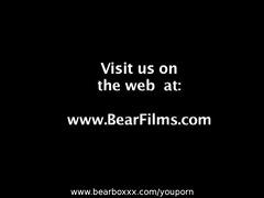 bear instincts 1